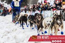 36th John Beargrease Sled Dog Marathon gets underway