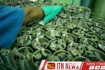 உள்நாட்டு மீனவர்களினால் பிடிக்கப்படுகின்ற மீன்களை பயன்படுத்தி டின்மீன் உற்பத்தியை மேற்கொள்ளுமாறு கோரிக்கை