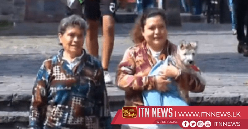 Pets show up at church in Mexico for St. Anthony Day blessing