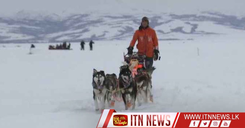 Waerner first to Unalakeet in the Iditarod