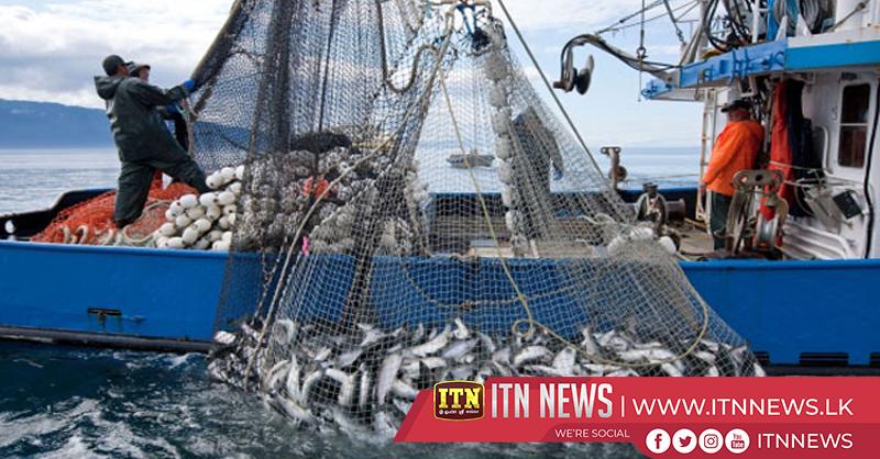 Sri Lanka leads in fishery exports