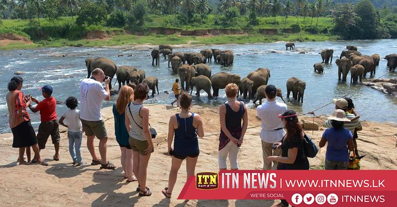 More tourists at Pinnawala Elephant Orphanage
